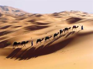 photo3-4-300x224 Marrakech Desert Tours 3 Days