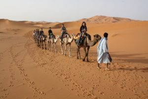 camel-treking-300x200 18 Days Morocco Sahara Desert tours From Casablanca