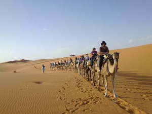 caravan-pic-300x225 2 Days Marrakech To Zagora Desert Tour