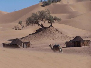 488079_172732152874515_1798661971_n-300x225 7 days 4x4 Morocco Tours from Casablanca via Merzouga Desert