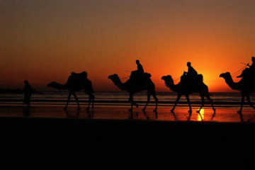 Day Excursion Agadir Sahara Tours