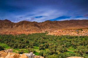 ziz-valley-maroc-300x198 10 Days Imperial Cities and Sahara Tours of Morocco
