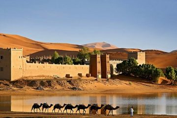Desert-Tours-Marrakech-Morocco-360x240 Intrepid Morocco