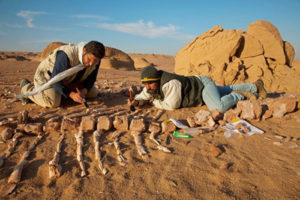 fossils-300x200 Morocco Sahara Exploring Expedition